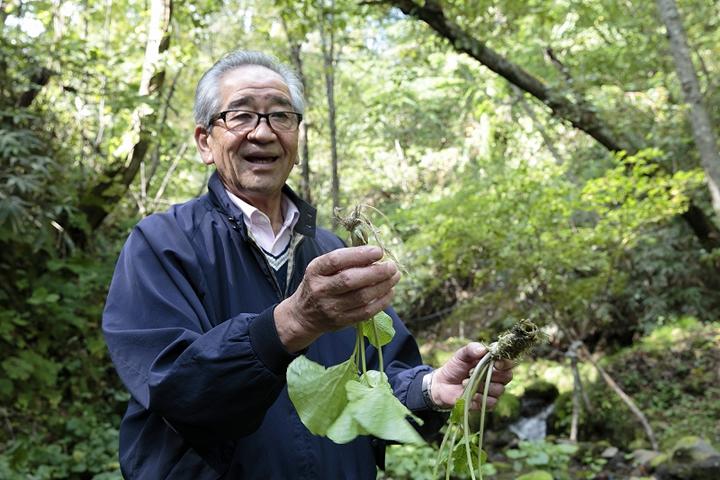 大正時代から続く、本わさびの栽培とわさび漬の製法を受け継ぐ、三代目の藤崎信雄さん