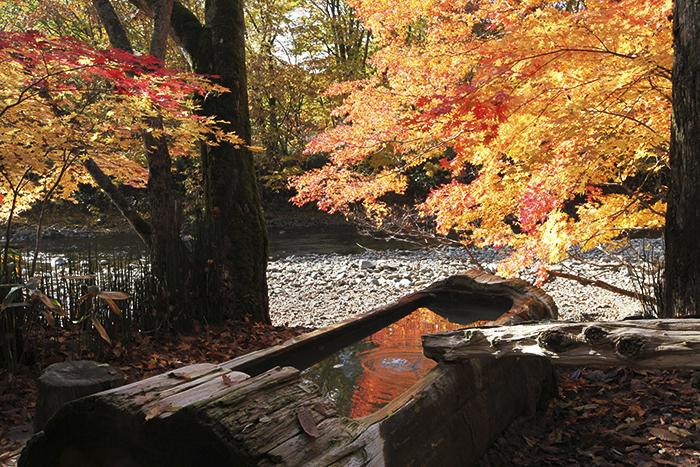 川のせせらぎと森の香りが心地よい「トチニの湯」(提供:銀婚湯)