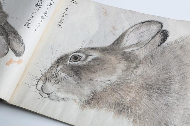 十倉が描いた兎の水墨画。髭一本にまで魂を感じる