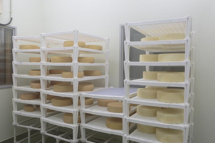 北海道チーズ