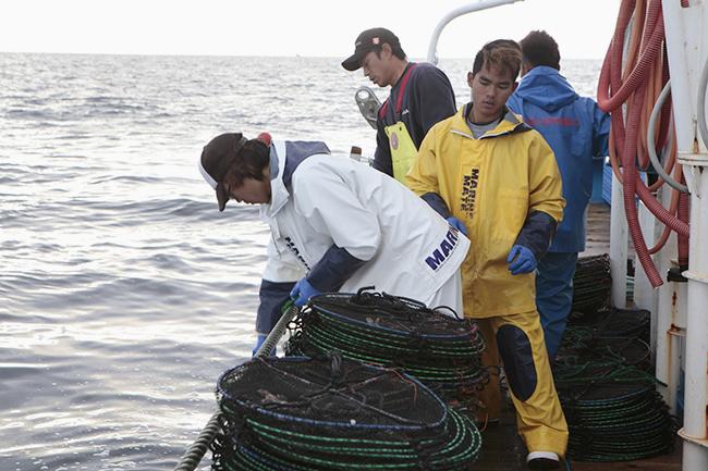 7人の乗組員が忙しく働く第八朝丸