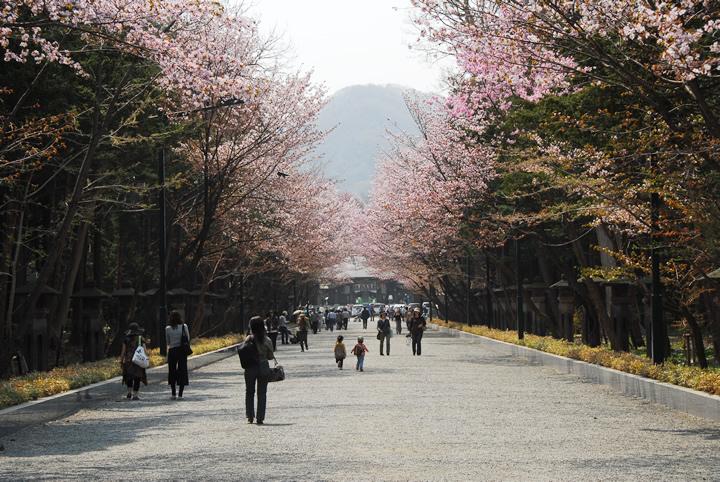 Hokkaido Jingu located in Maruyama