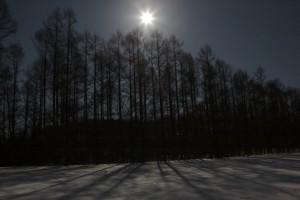 駐車場の街灯から離れるにつれ、やわらかな闇と、足元の締まった雪と、木々の世界に引き込まれる